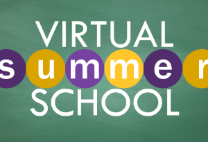 Distance Learning Summer Academy