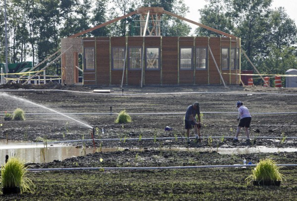 photo of the yurts as they were being built in the beginning.
