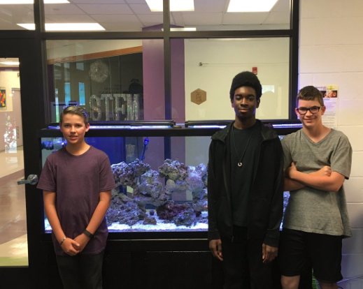 PJ, Daniel and Payton have the aquarium set up and ready to go!