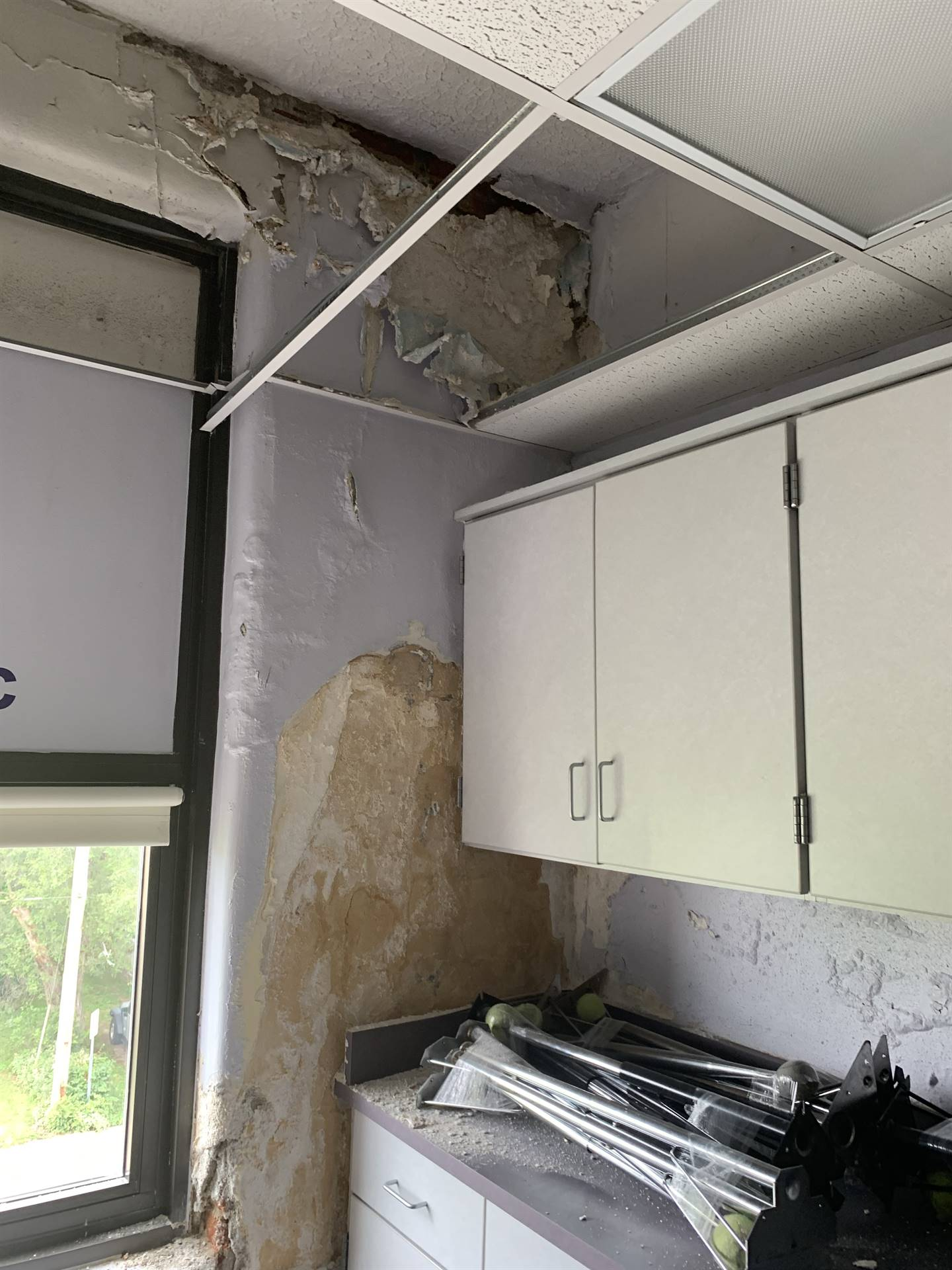 Ceiling and Wall damage