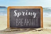 Extended Spring Break Lesson Plans